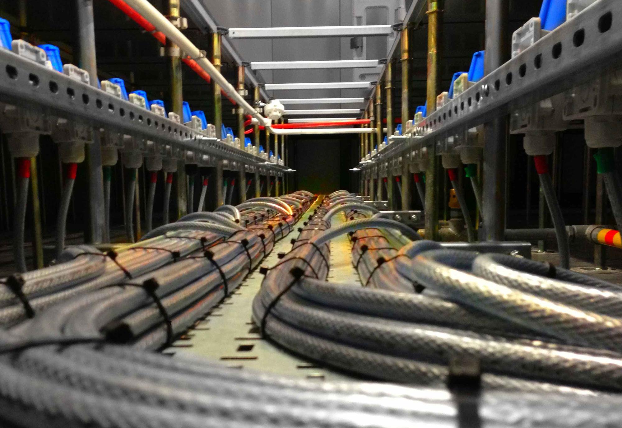 Strange Electrical Term Paper Service Rhessayyath Ecommercegateway Info Wiring Digital Resources Counpmognl